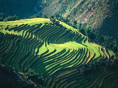 parapente nepal 2013